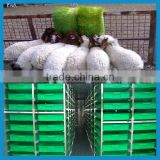 500kg 1000kg barley germination machine barley grass making growing machine
