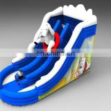 2012 New Design inflatable slide both for water and dry slide