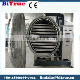 High quality fruit vacuum freeze dryer