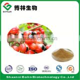 Bolin Factory Supply Natural Paullinia Cupana Extract Guarana Seed Extract