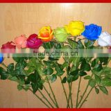 Silk Long Single Stem Mult-color Real Touch Flower Rose