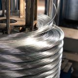 Hot Selling Galvanized Steel Wire