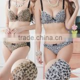 We Have Stocks Young Girls Breathrable Underwear Deep V Push Up Velvet Leopard Bra Set Lingerie For Winter/Autumn 200set/Lot