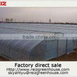 15 years warranty hot galvanized pipes cheap PE film agriculture single span tunnel greenhouse