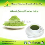 Professional supplier in China supply Organic Wheat grass Powder 5:1 10:1 20:1 fresh stock