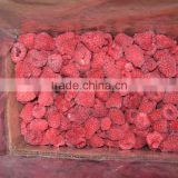 Frozen whole raspberry for sale