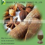 factory supply top quality Cinnamon Bark Extract,Cinnamon Bark Extract powder,ceylon cinnamon powder