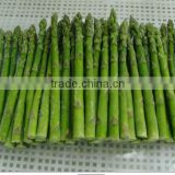 IQF frozen green asparagus price