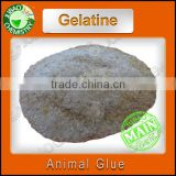 Industrial grade organic Gelatine powder Animal Glue