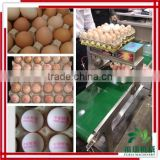 China product Egg Printer Machine/eggs continuous ink jet printer/Printing eggs direct jet printer
