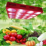 hydroponics grow led full spectrum led plant indoor 1140 w spider cob led grow light full spectrum