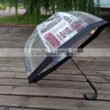 Bell/dome shape transparent POE foldable umbrella with city building printing