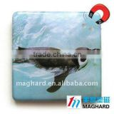 aquatic bird Magnetic Epoxy Gifts