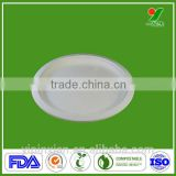 eco-friendly bagasse biodegradable disposable wheat straw paper plate
