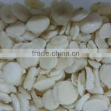 wholesale frozen garlic dice / slice/ paste with good quality