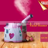 Hot sale portable hot & cold facial steamer