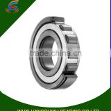 Steel single row cylindrical roller bearing NU 1006