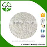 white solid calcium ammonium nitrate fertilizer