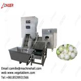 Onion Processing Machine Line|Onion Peeling and Root Cutting Plant|Onion Skin Remover Low Price