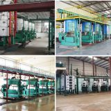 Oilseeds pretreatment and pre-pressing machine