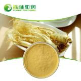 High Quality Ginseng Powder 100% Soluble In Water Panax Ginseng Extract