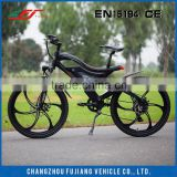 Inquiry about 2015 FJ-TDE05 36v battery for electric bike 500w made in china