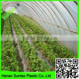 high quality factory produced strawberry greenhouse film/plastic thin film/blow molding film