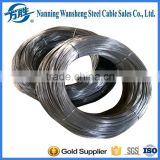 galvanized, electro galvanized, hot dipped galvanized type and is alloy alloy or not galvanized steel wire