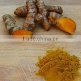 Best Quality Turmeric Oil
