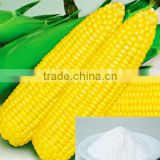 Native Food Grade Corn Starch / Tapioca Starch Food Grade