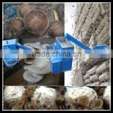 Advance design shiitake Mushroom bagging machine/oyster mushroom growing machine/black fungus mushroom bagging equipment