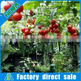 Easy Assemble One Stop Gardens Greenhouse Parts