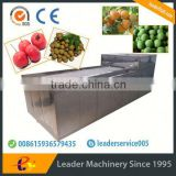 Leader fruit peeling and pitting machine for litchi with Skype:leaderservice005