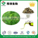 Bolin Supply Organic Moringa Seed Extract Oil for Moringa Oil Capsule