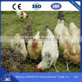 Alibaba China Hexagonal Wire Mesh Chicken Wire Netting 3/4 Inches Weight Of Lowes Chicken Wire Mesh Roll