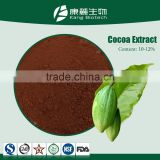 Factory organic pure indonesia cocoa bean extract powder,bulk cocoa powder