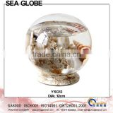 Glass Ball With Sea Life and Water Inside Free Glass Stand YSG12