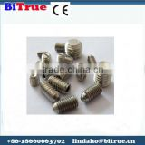 Stainless steel slotted set screw