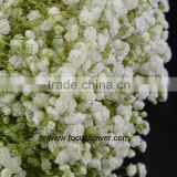 Wholesale Preserved Flower Baby's Breath Hobby Lobby Wholesale Flowers Of Babysbreath