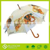 Wood handle umbrella,wood shaft umbrella,animal umbrella