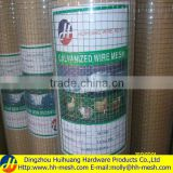 electro gi welded wire mesh (PVC COATED OR GALVANIZED)Manufacturer&Exporter-OVER 20 YEARS