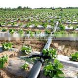 Irrigation systems high quality drip tape with two blue line sprinkler irrigation pipe made in China