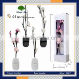 Many scented nice packing round shape decorative aroma reed diffuser with incense oil gift set