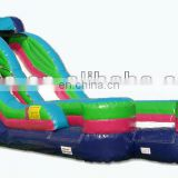 inflatable PVC slide, inflatable game china, commercial inflatable slide DS075