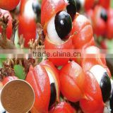 Food supplyment guarana extract 10%~20% caffeine powder