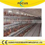 Focus industry uganda poultry farm automatic chicken layer cage 120 layers poultry battery cages