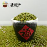 Sprouting Green Mung Bean and sale 2016 crop with high quality
