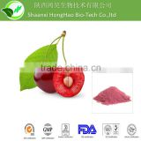 Honghao High Quality acerola cherry powder/organic acerola powder/black cherry powder