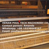 Congo Poultry Farm Equipment - Broiler Cage & Meat Chicken Cage & Chicken Coop in Broiler House & Chicken Shed