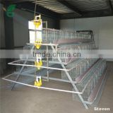 Automatic Control Layer Chicken Poultry Farm Shed